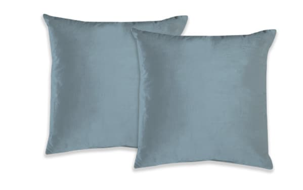 Set of 2 Velvet Pillows