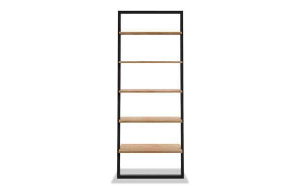 Finch Ladder Bookcase
